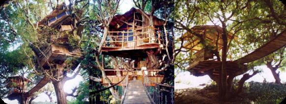 sanya-nanshan-treehouse-resort